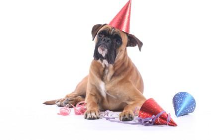 10 tips til nytårsaften
