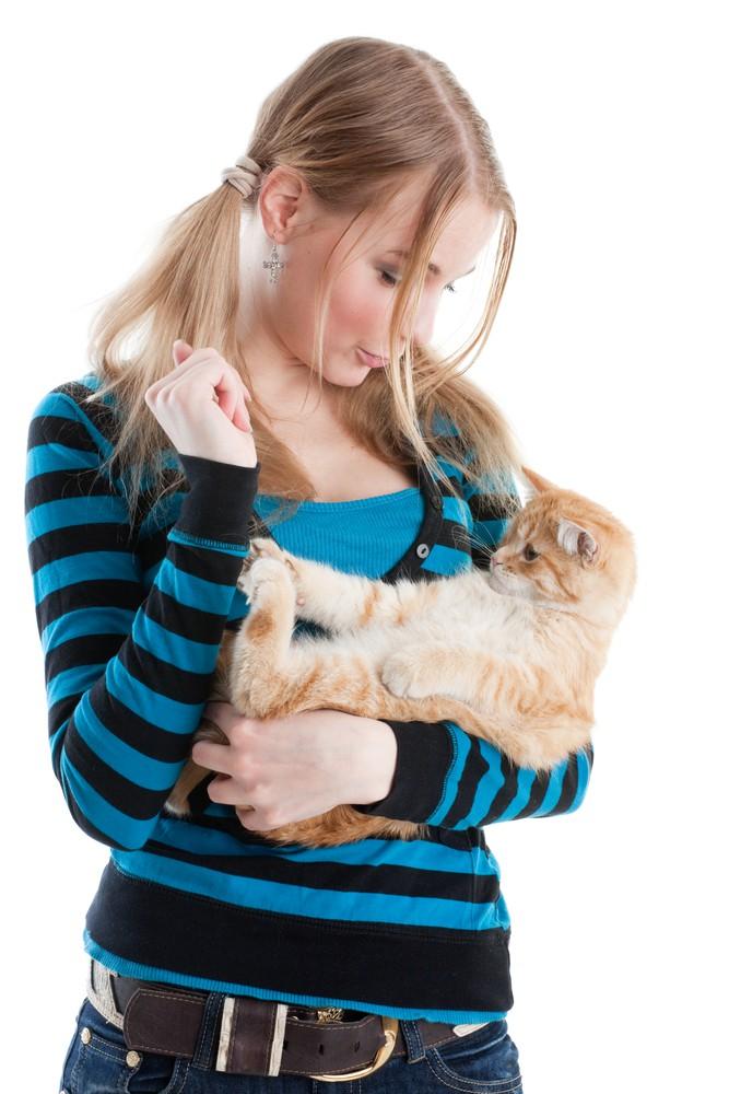 Overvejelser inden anskaffelsen af kat