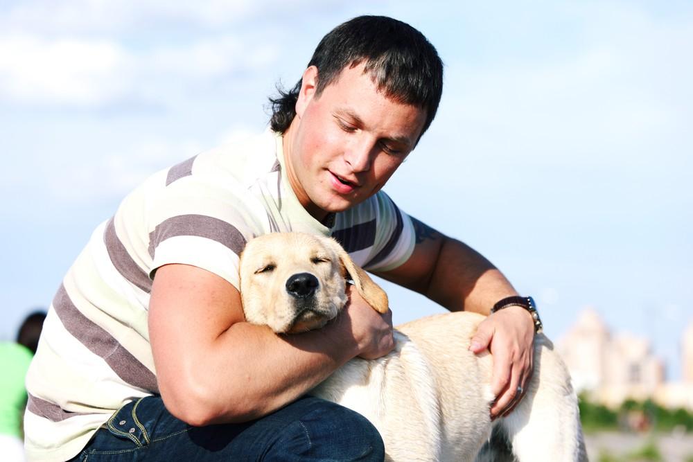 Regler for hunde og ejere ombord på lystbåde